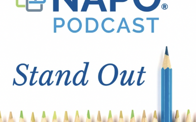 NAPO Stand Out Episode 78: Step Into Your Swagger with Self-Acceptance, Your Biggest Asset