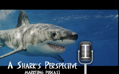 """A Shark's Perspective Episode 291: Leslie Ehm """"Do You Have Swagger?"""""""